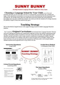 SUNNY BUNNY strategy